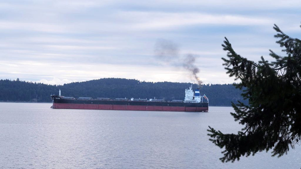 Group taking action on increased freighter anchorages around Thetis Island