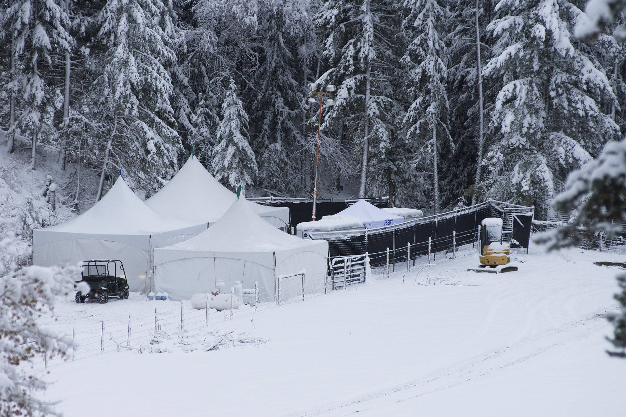 The search of the property in the 2200 block of Salmon River Road continues despite a thick blanket of snow on Friday, Nov. 3.- Image credit: Jim Elliot/Salmon Arm Observer