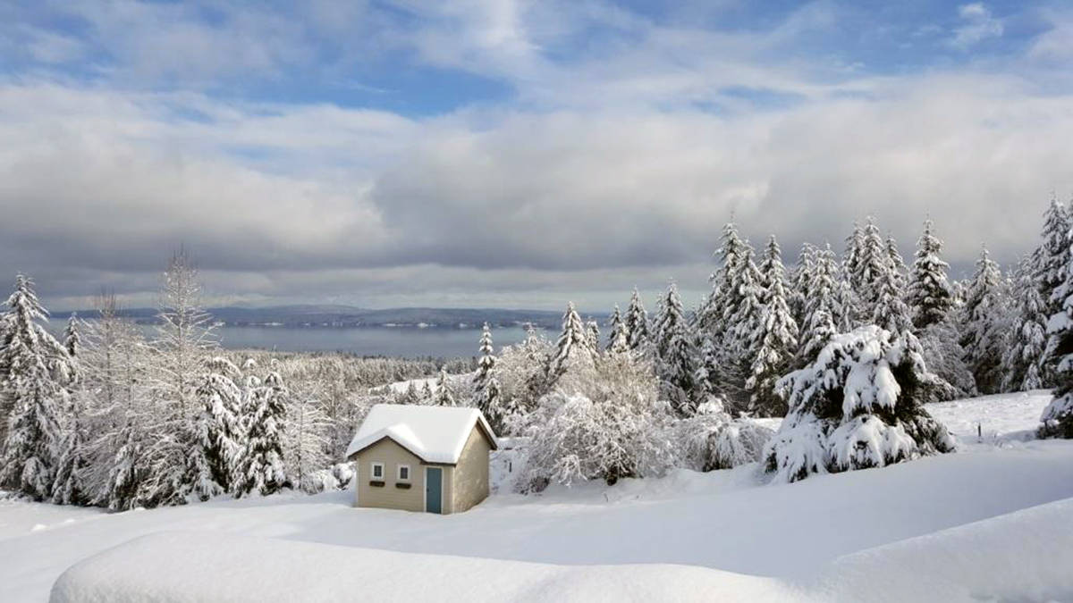 Unexpected La Nina brings a revised winter weather forecast for Chemainus region