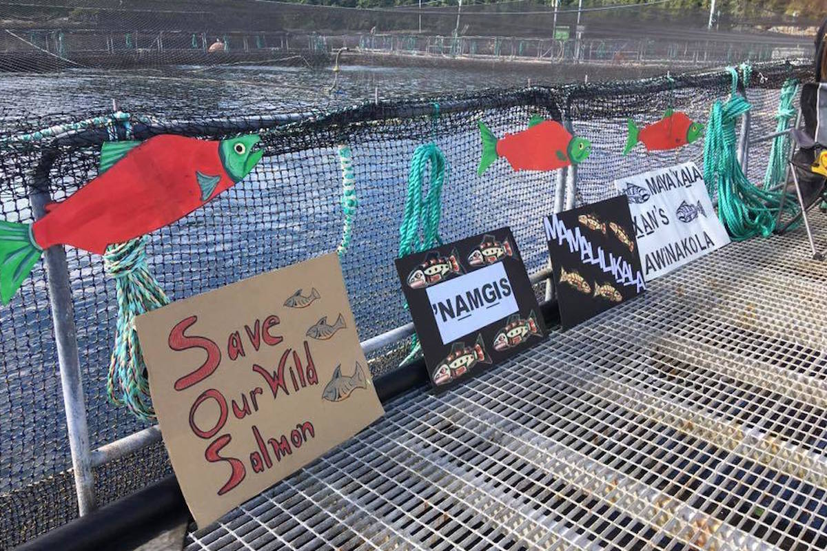 Province continues to meet with First Nations on Fish Farm issues