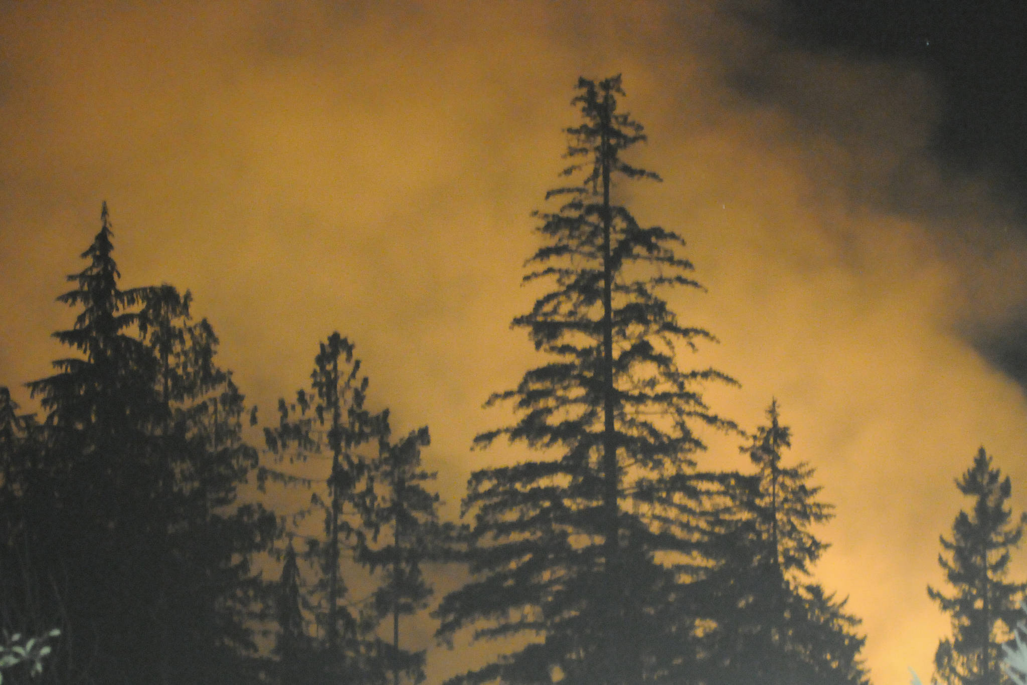 Smoke and flames from the fire east of Great Central Lake can be seen from Great Central Lake Road, early Tuesday morning, Aug. 7, 2018. Sproat Lake Volunteer Fire Dept. personnel were out at the scene before 1 a.m. SUSAN QUINN PHOTO