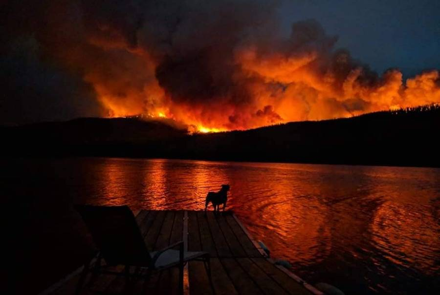 No B.C. region left untouched with 462 wildfires burning