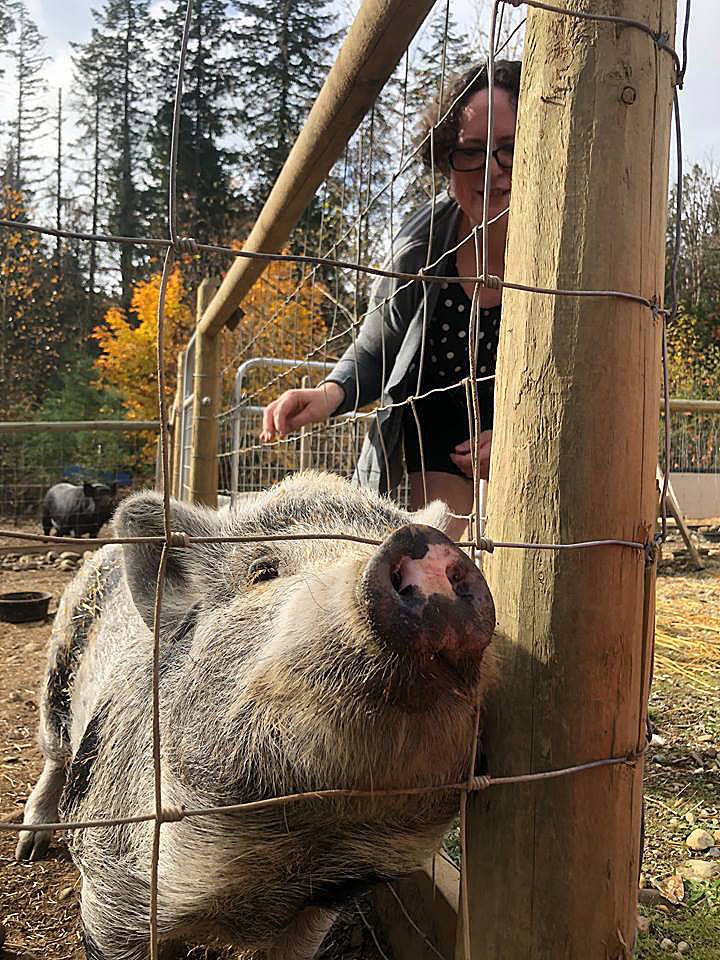 Year in Review: Memorable photos from the Cowichan Valley in 2018