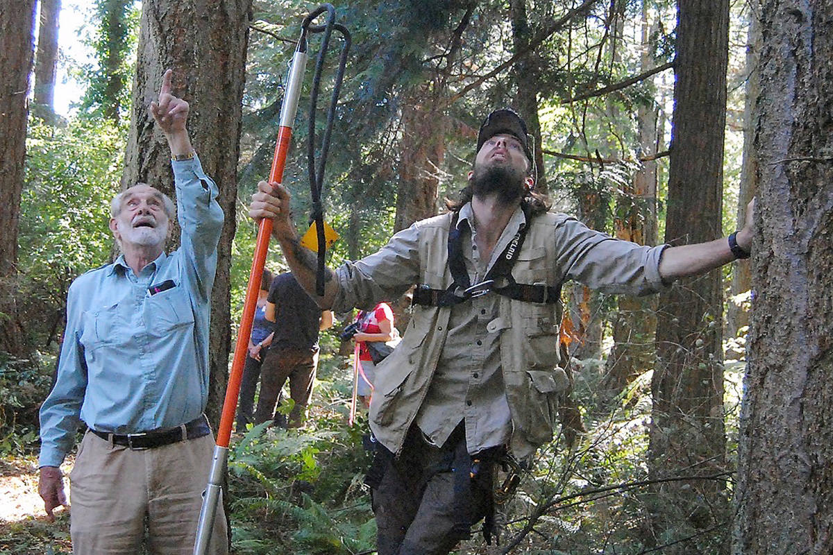 Eagle expert David Hancock, left, and Myles Lamont check the treetop where they would build the eagle's nest at the French Creek Estuary. (Michael Briones photo)
