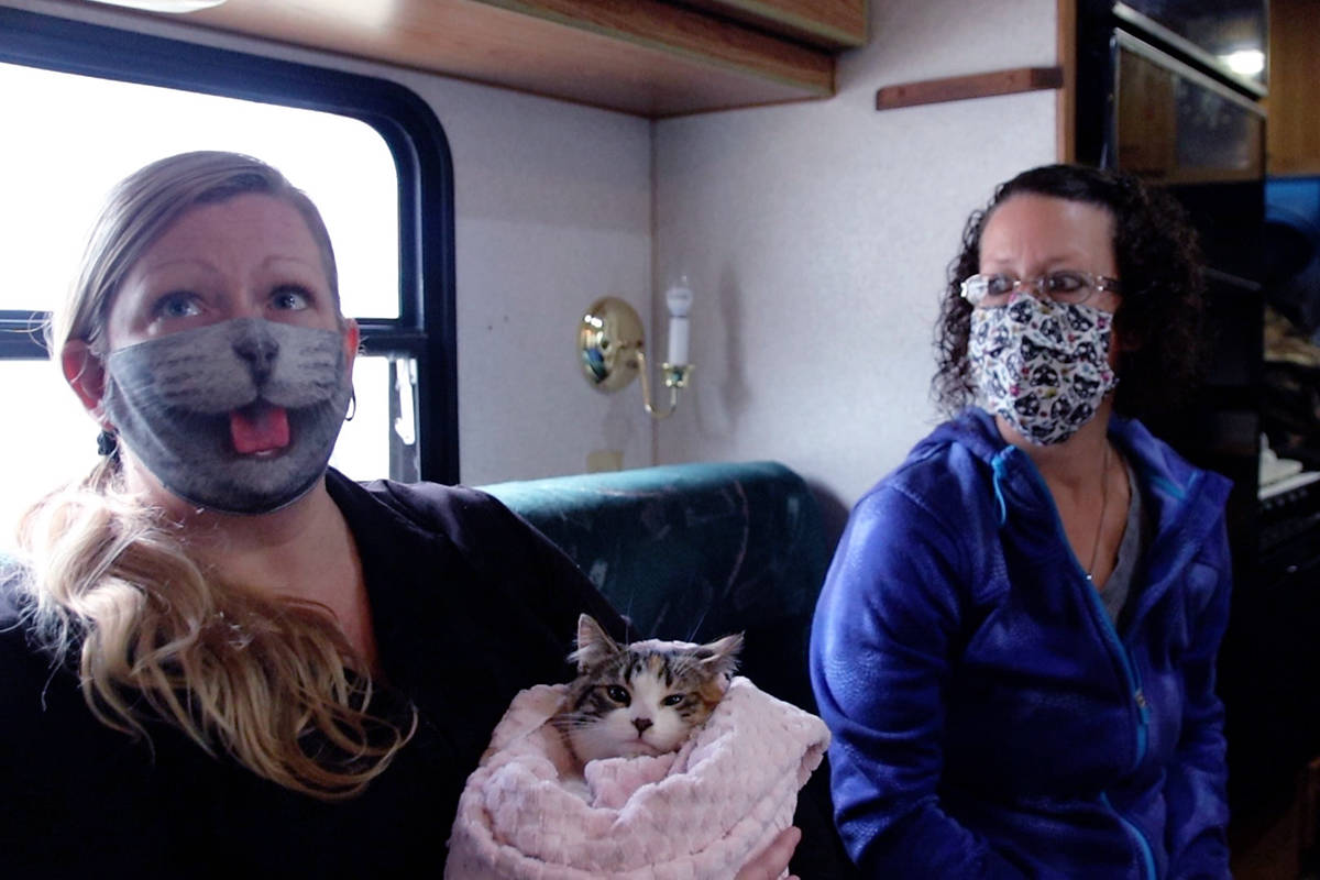 Kimberly Feeny, left, rescues, fosters and homes cats with the Kootenay Animal Assistance Program. She and friend Lisa Valenta, right, spent Friday, Nov. 27 nursing seven rescued kitties at Feeny's home in Grand Forks. Photo: Laurie Tritschler