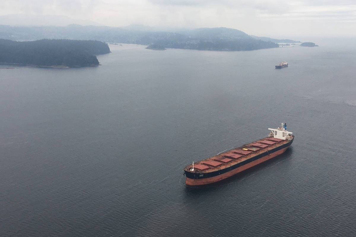 North Cowichan has joined the growing number of local governments opposed to the anchorage of freighters in waters close to the Cowichan Valley. (File photo)