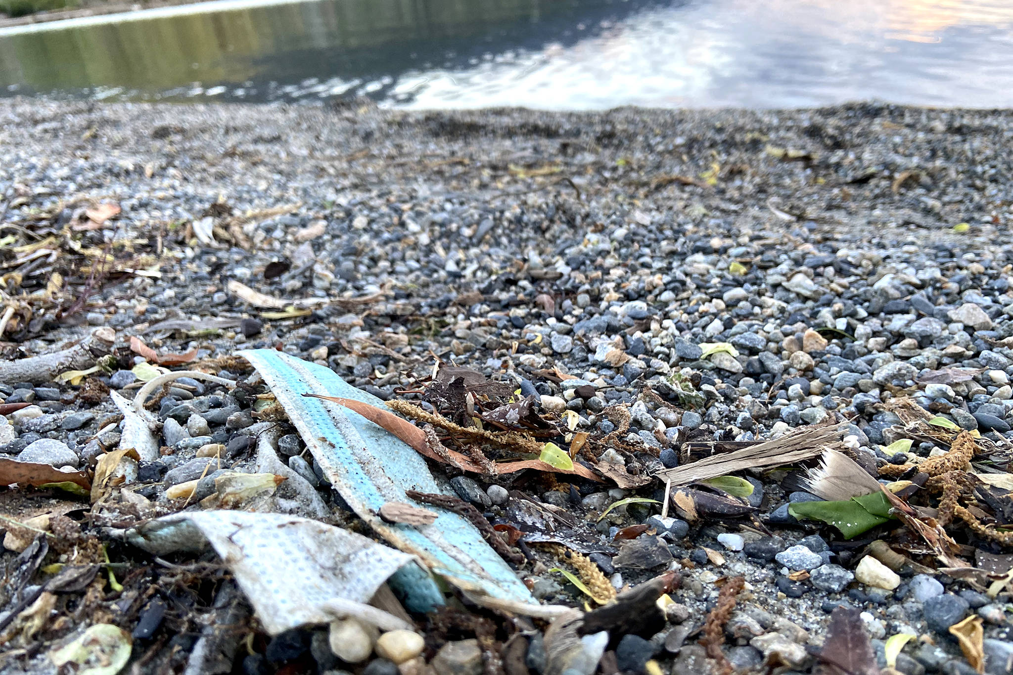 COVID-related trash is washing up on shorelines across the world, including Coldstream's Kal Beach, as pictured in this May 2021 photograph. (Jennifer Smith - Black Press)