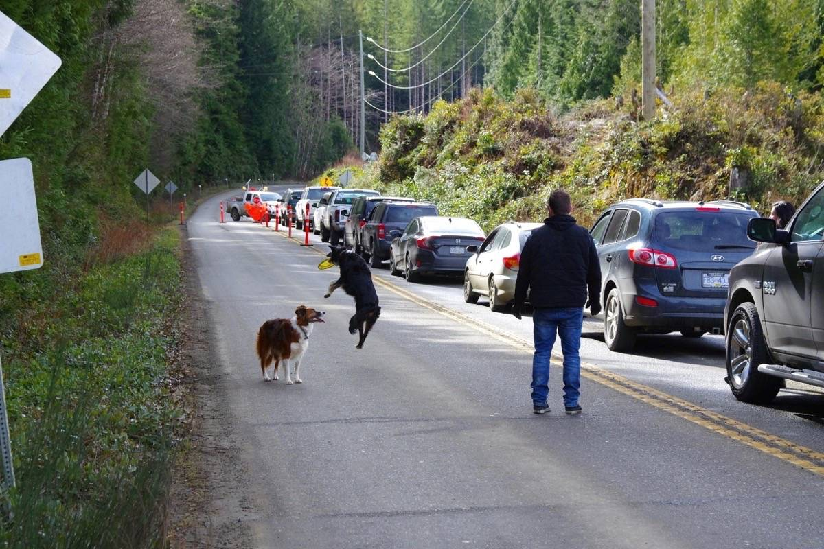 Dogs, cars, and humans play the Kennedy Hill waiting game during the ongoing construction project that started in May 2018. (George Fifield photo)